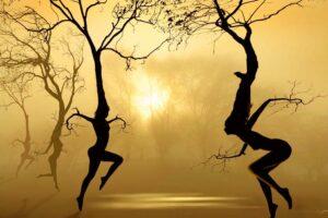 Alas y raíces
